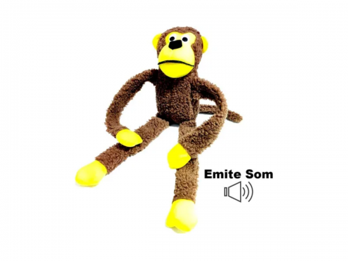 Macaco-1.png